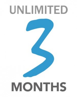 Net->3 Months Unlimited